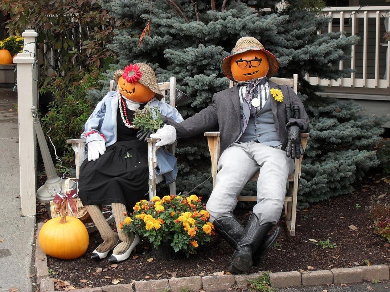 pumpkin-378665_1280